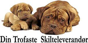 Professionel Hjemmeside - website - SEO - Søgemaskineoptimering - Skilte Design Randers