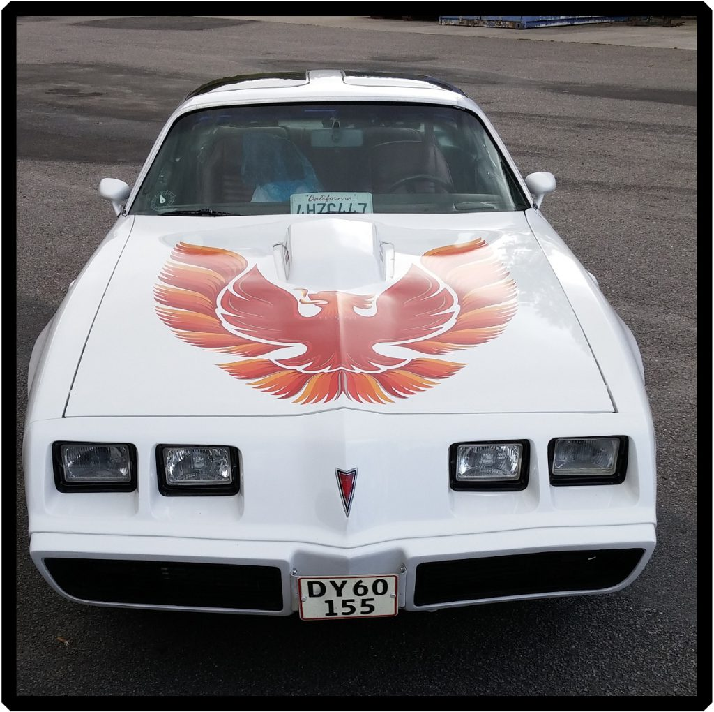 bilreklame-folie-til-biler-varevogn | klistermærker til biler | Bilreklamer | Autoreklamer | Bildekorationer | |Skilte Design Randers